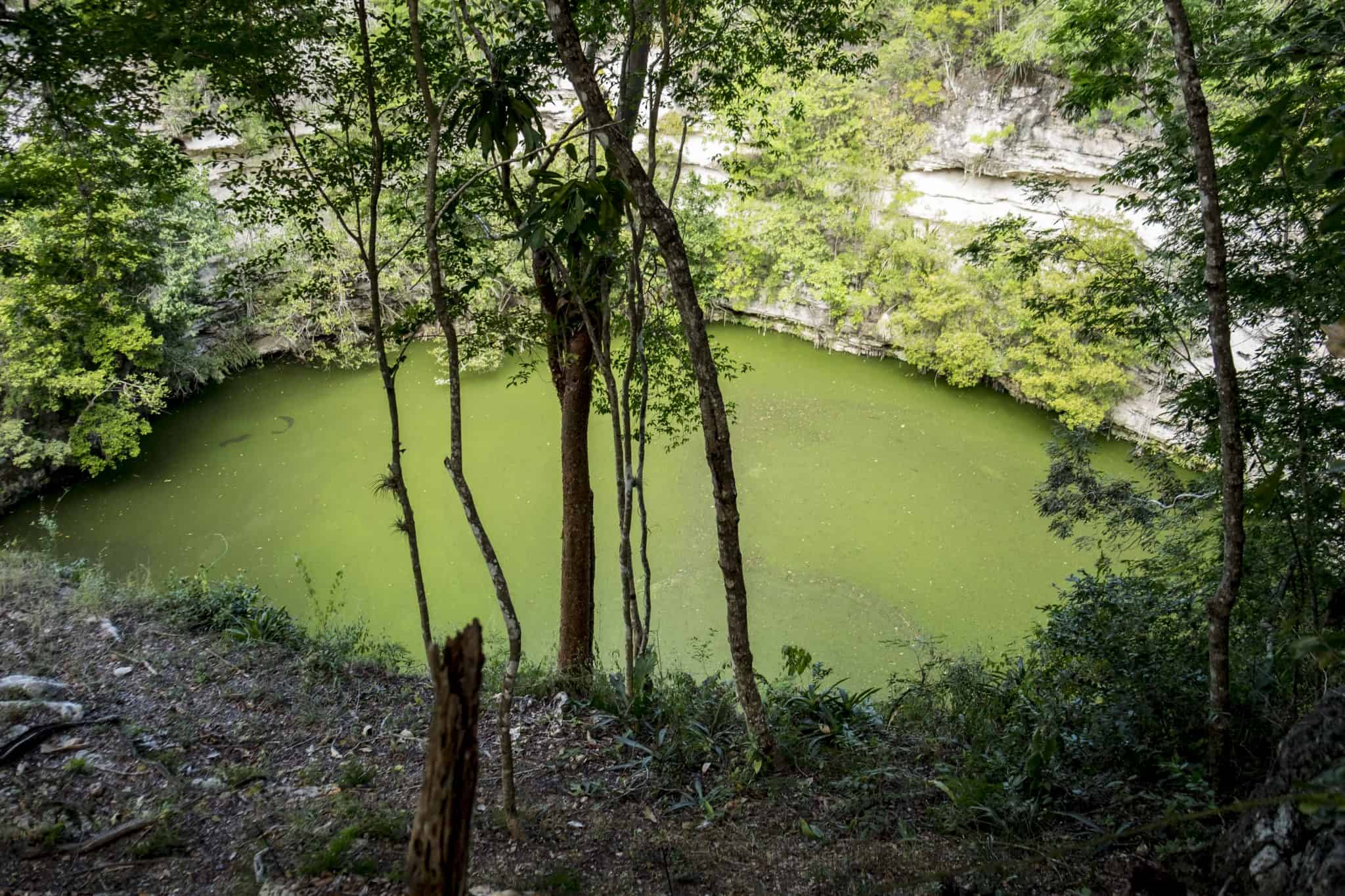 Cenote Sagrado no Chichén Itza