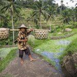 Bali | Roteiro, gastos e dicas de viagem